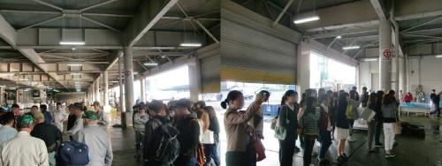 地元大学生が市場見学に訪れました!